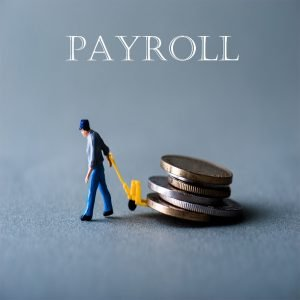 Payroll _ Integrity Data