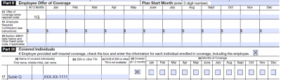 Employee Terminated in Prior Year – Enrolled in COBRA All Year **Self-Insured Plans Only**